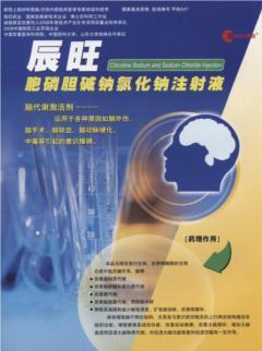 胞磷膽堿鈉氯化鈉注射液